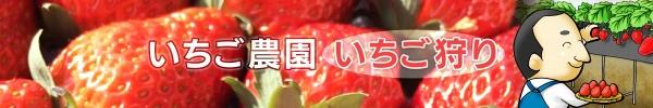 Photo_20210202194601
